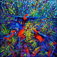 006 Crimson Rosellas