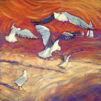 046 Seagulls by the Bay